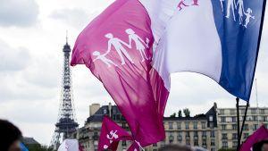 Mielenosoittaja kantaa ydinperhemallia kannattavaa lippua homoliittoja vastustavassa mielenosoituksessa Pariisissa.