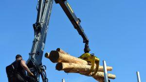 Puunkuormaus; puita; puunkuormauslaite