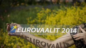 Eurovaalit 2014.