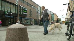 Markku Vuorinen kulkee Deni-koiran kanssa kävelykadulla.
