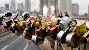 Lemmenlukkoja Brooklynin sillalla New Yorkissa.