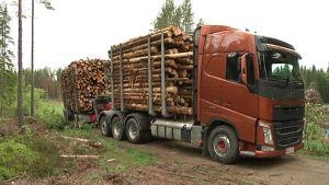 Uudenmallinen, aiempaa korkeampi tukkirekka, sallittu 2013, Eurajoella, tukinkuljetusauto