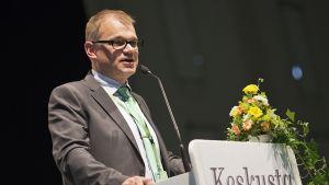 Juha Sipilä puhuu puoluekokouksessa.