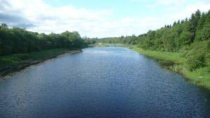 Sillalta avautuu näkymä yli Tiukanjoen.