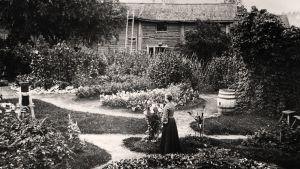 Renforsin puutarha, Brahenkadulla, 1890-luvulla.
