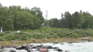 Metsäinen saari ja majakan torni.