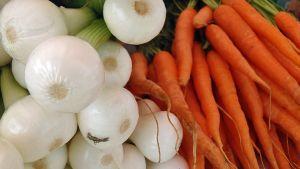 Sipuleita ja porkkanoita nipussa