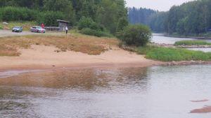 uimareita joessa