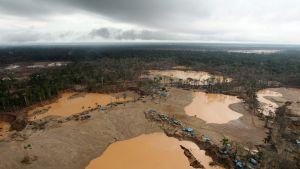 Poliisit lopettivat laittoman kaivoksen Tambopatan luonnonsuojelualueella Perussa 25. tammikuuta 2014.
