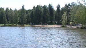 Uimaranta.