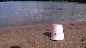 Leikkisanko uimarannalla.