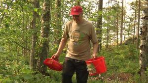 Mies kulkee metsässä ämpärit kädessä.
