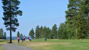 Miehet kävelevät golf-kentällä