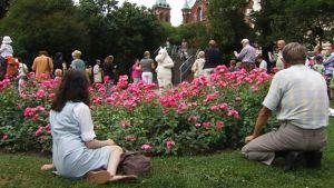 Katajanokan puisto nimettiin Tove Janssonin puistoksi.