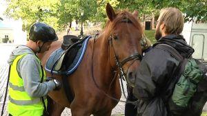 Hevonen ja kaksi miestä