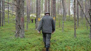 Joukko ihmisiä kävelee metsässä.
