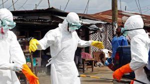 Työntekijät desinfioivat toisiaan haettuaaan Ebola-virukseen kuolleen ihmisen ruumiin Monroviassa, Liberiassa 13. syyskuuta 2014.