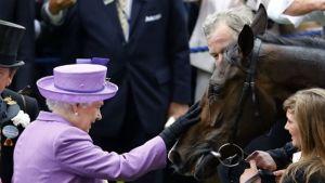 Kuningatar Elisabeth omistamansa kilpahevosen Estimaten kanssa.