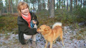 Englantilainen Angela Cavill rapsuttaa suomenpystykorvaa metsämaisemassa.
