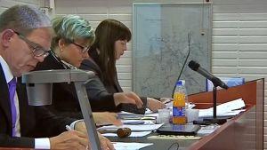 Petri Kauppinen, Anne Lukkari ja Paula Halonen valtuuston kokouksessa.