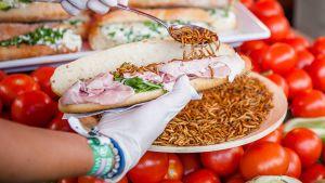 Jauhomatovoileivän tekoa Lowlands-festivaaleilla, Hollannissa 15. elokuuta 2014.