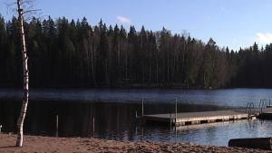 Kuusijärven kyljessä on hehtaarikaupalla maata, jonka Vantaa haluaisi ostaa itselleen.