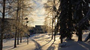 Lumeen tallattu polku puistossa