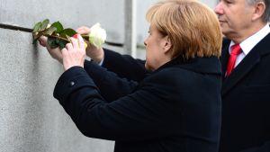 Saksan liittokansleri Angela Merkel asettaa kukan muistomerkille Berliinin pormestari Klaus Wowereitin kanssa (oik.) muistotilaisuudessa 9. marraskuuta 2014.