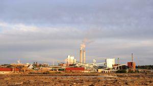 UPM Kaukaan tehdas Lappeenrannassa.