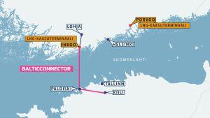 Kartta LNG-terminaaleista sekä Viron ja Suomen välisestä maakaasuputkesta.