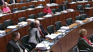Silvia Modig halasi Erkki Virtasta eduskunnan täysistunnossa torstaina.