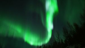 Vihreitä revontulia taivaalla.