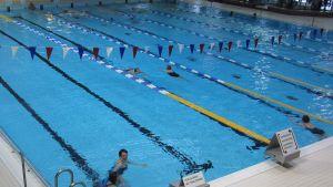 Kuvassa uima-allas, jossa on uimareita