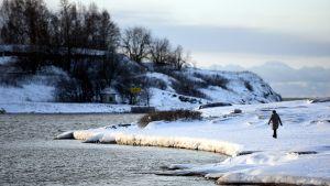 Ulkoilija Kaivopuistossa Helsingissä tapaninpäivänä 26. joulukuuta 2014.