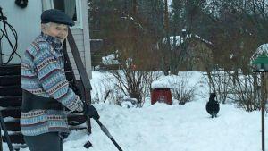 Kalle Mähönen ja metso lumitöissä.
