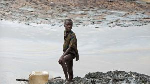 Öljyn tahrima puro lähellä Goita Ogonimaassa, Nigeriassa.