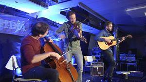 Erlend Viken Trio esiintymässä risteilyllä.