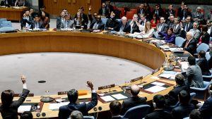 YK:n turvallisuusneuvoston kokous New Yorkissa.