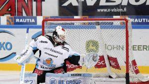 Janne Juvonen, Pelicans-molari