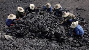 Työntekijät lajittelivat kivihiiltä.