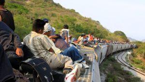 Paperittomia siirtolaisia junan kyydissä
