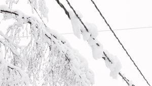 Lunta sähkölinjalla.