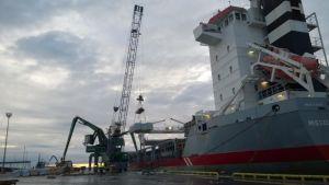 Sahatavaraa lastataan laivaan Kaskisten satamassa. Kyseinen alus ei liity uuden laivalinjan käynnistymiseen.