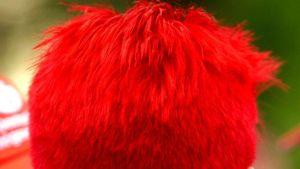 Punaiseksi värjätyt hiukset.