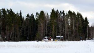 Kuopion Neulaniemen maisemaa