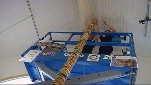 4,9 metriä korkea jättipurilainen, johon upposi pikaruoka-aineksi yli sadan kilon verran.
