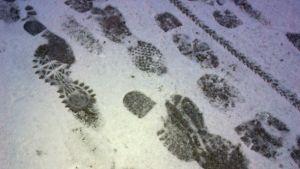 erilaisten kengänpohjien, pyörän ja koiran jälkiä asfaltilla ohuessa lumessa