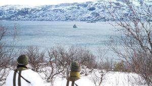 Joint Viking 2015 -sotaharjoitus