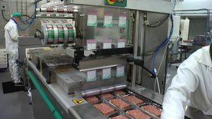 lihojen pakkaamista linjastolla