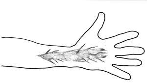piirros tatuoidusta kädestä